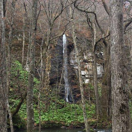 森林浴とマイナスイオン満喫