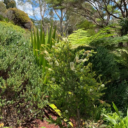 Greater Wellington Photo