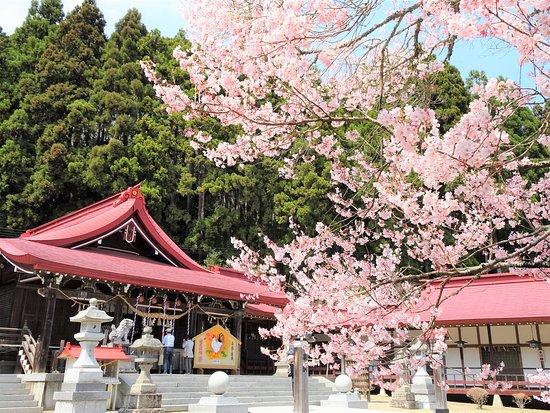 Iwanuma, Japan: 春の社殿