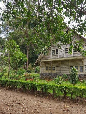 Malabar Tea Plantations (Bandung) - Aktuelle 2019 - Lohnt ...