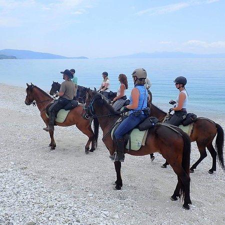 Caravan Horse Riding Albania