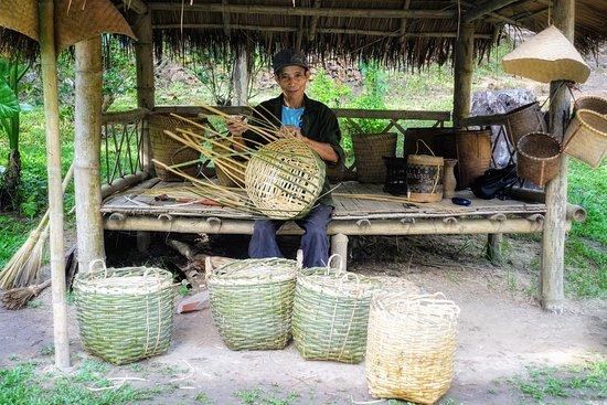 Mekong Elephant Park Image