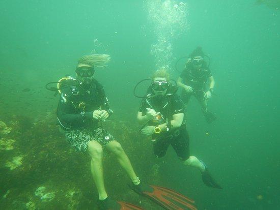 Khao Lak Scuba Adventures : Underwater fun