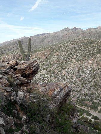 Sabino Canyon Photo
