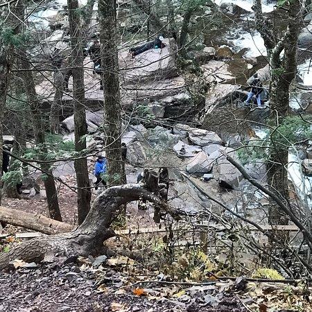 Haines Falls Foto