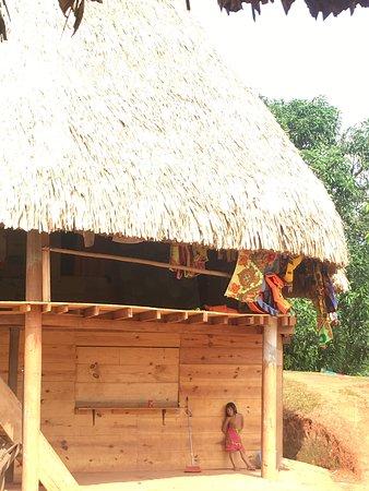 Rio Gatun, פנמה: COMUNIDAD EMBERA - QUERA  Es una comunidad indígena de la etnia Emberá.  Habitan en el Lago Gatún, provincia de Colón.    Al ser habitantes de un área protegida, viven en completa armonía con la naturaleza.   Enseñan sobre su forma de vida, cultura, cocina, pero sobre todo nos comparten ese amor y respeto por nuestra madre tierra.   No olvides ir a Emberá Querá en tu próxima visita a Panamá.