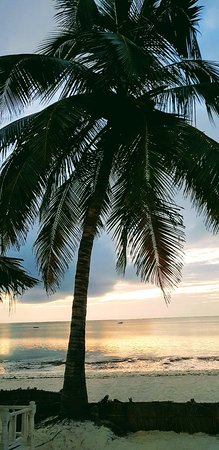 Foto de Watamu Beach