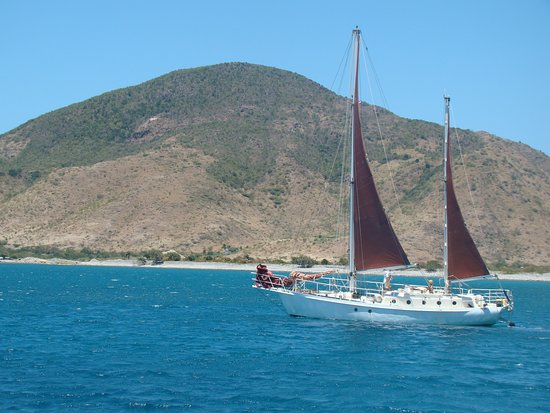 Captain Coconut Sailing Adventures