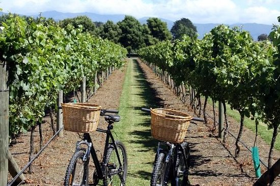 Halvdagers E-Bike Vineyard Tour med...