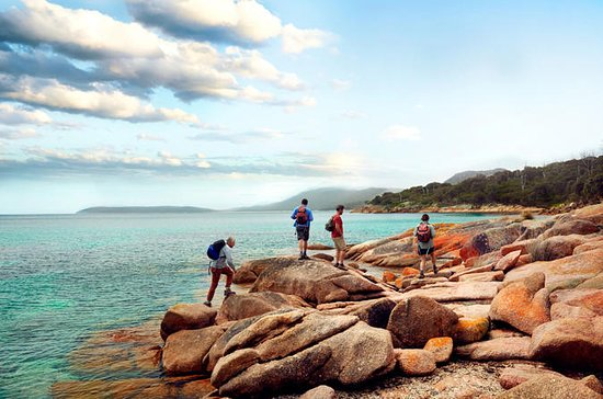Great Walks of Australia: 4-Day...