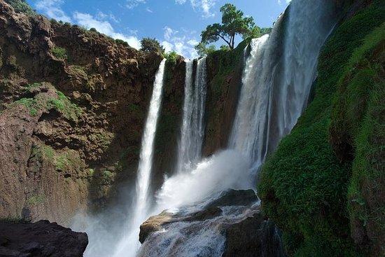 Ouzoud Falls guidet dagstur fra...