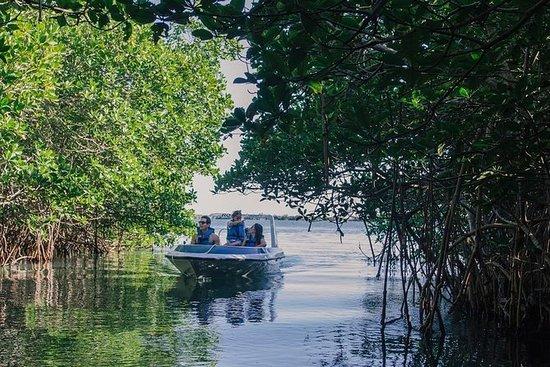 Adventure Mangrove Channels: Fahren...