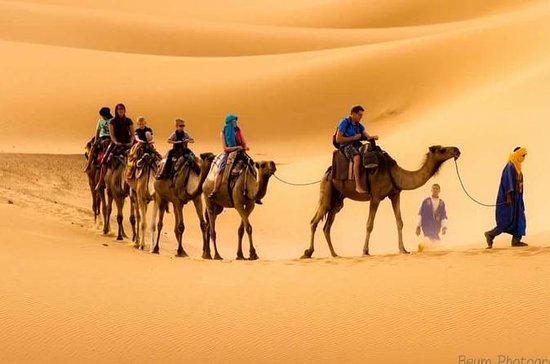 Privater 3-tägiger Saharaausflug nach...