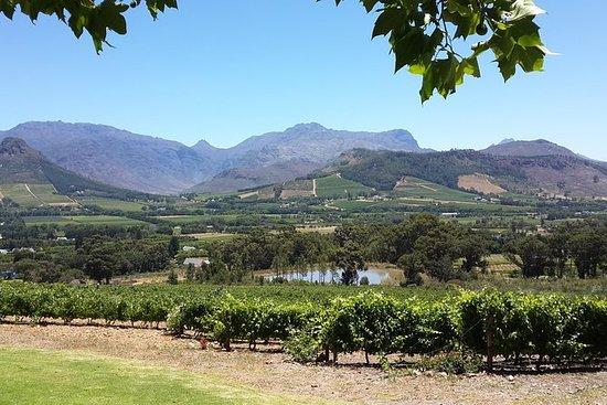 Cape of Good Hope et Cape Winelands...