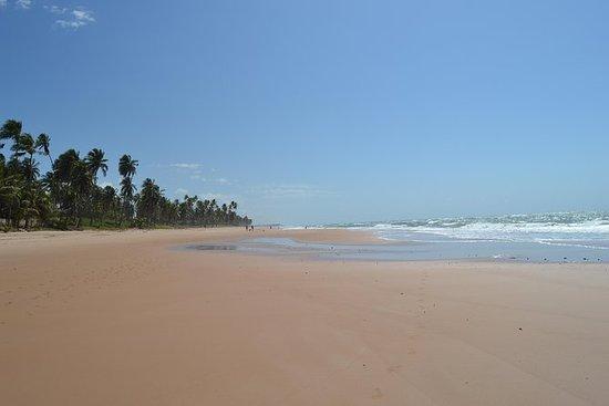 Excursão a pé à Praia de Jauá, saindo...