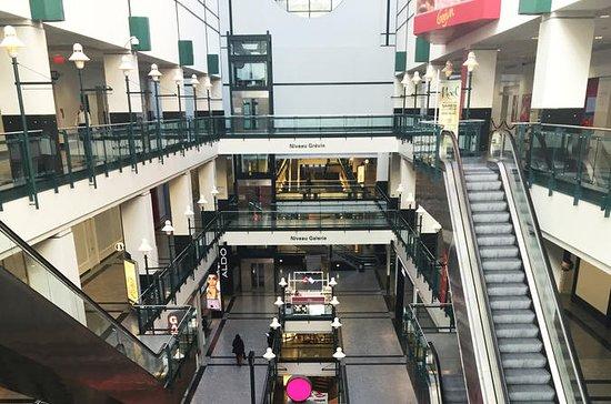Visite du centre de Montréal et de...