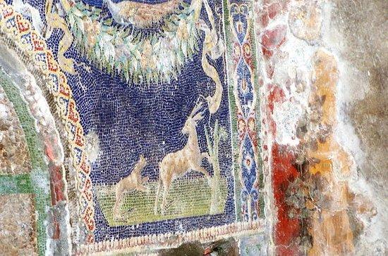 Pompeji und Herculaneum: Tagesausflug...