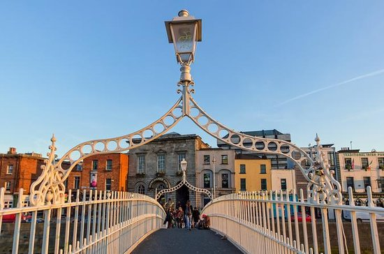 Private 4-hour Dublin Tour with a...