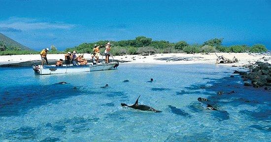 Ganztägige Insel Española