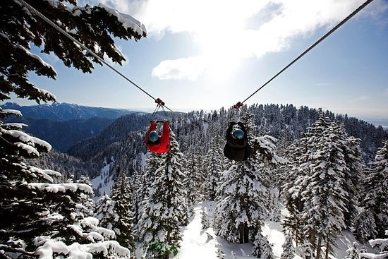 Grouse Mountain 3-Line Zipline ...