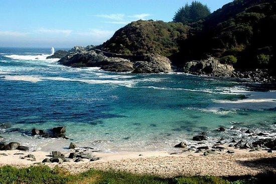 Tour privado Pacific Treasures...