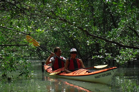Fiorde Tropical Caiaque Mamanguá