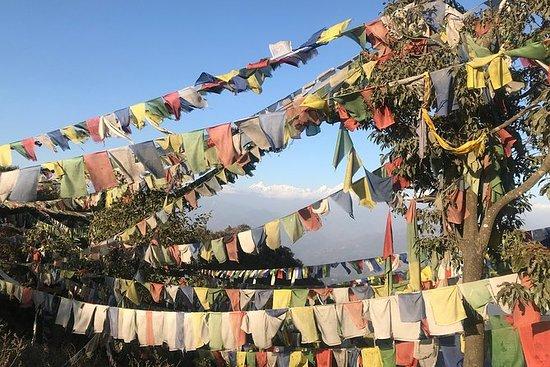 Phulchowki - Dagsturer fra Kathmandu