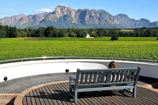 Tour del vino di Città del Capo