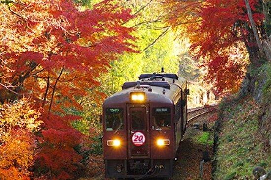 Watarase Keikoku Railway, Takatsudokyo...
