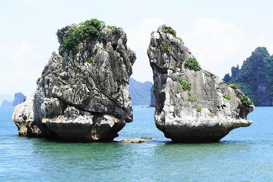 Halong Dragon Daily Cruise
