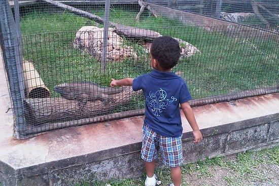Visita allo Zoo della Giamaica a