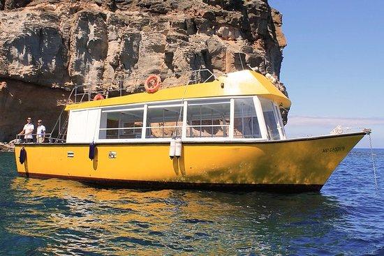 Excursión en barco y esnórquel todo...