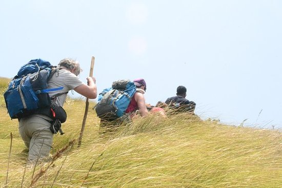 Kerala Bird Watching & Trekking Tour