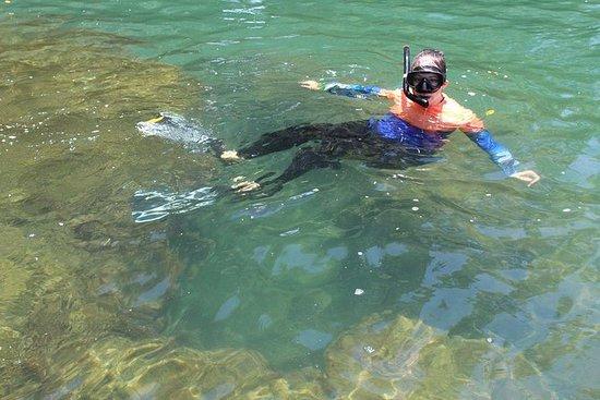 Snorkeling by boat