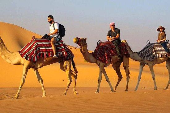 Excursión Osian con camello Safari...