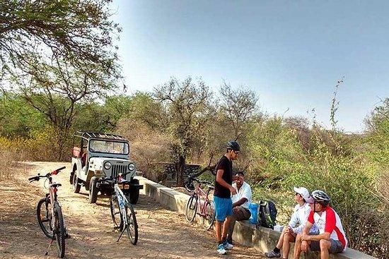 Wildtier-Radtour in Jaipur