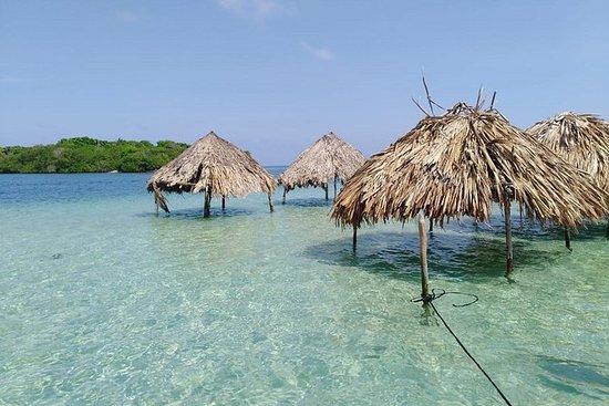 Exklusiv hel dagstur på öarna, Cholon ...