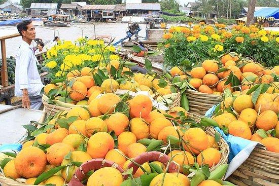 探索湄公河三角洲一日游