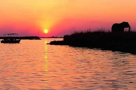 CHOBE SUNSET CRUISE FROM VICTORIA...