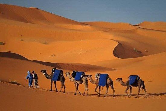3 dager 2 netter Desert Trip fra Fez...