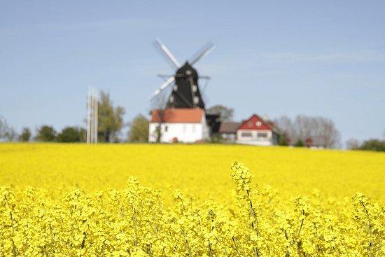 Zweden en Denemarken Rondreis