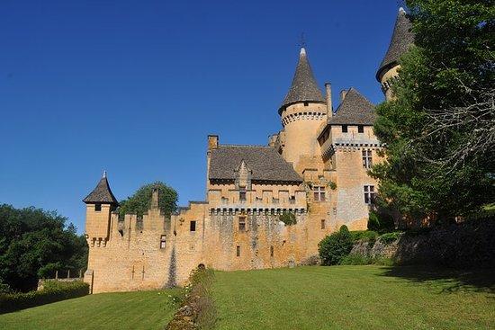 Puymartin城堡入场券
