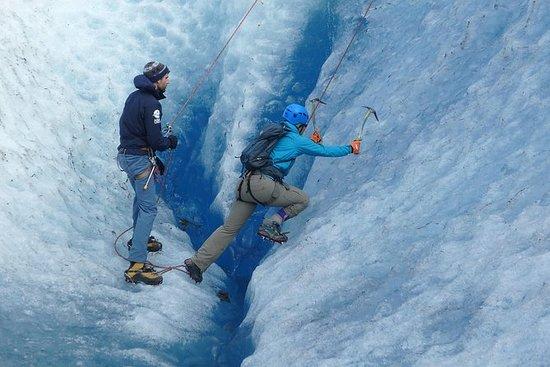 Juneau Shore Excursion: Glacier Blue...