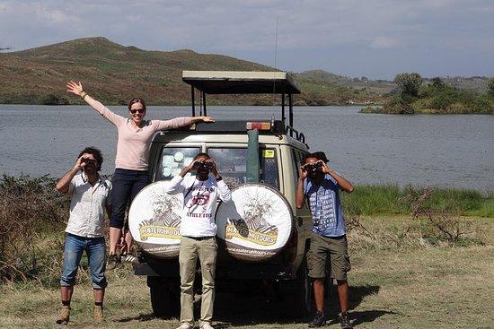 Camping 5 Days: Tarangire, Serengeti...