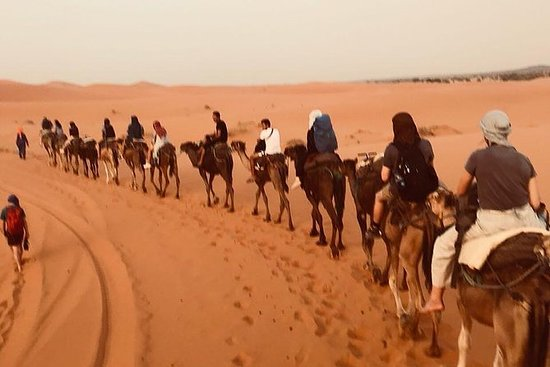 Private Merzouga Wüstentour von Fez...