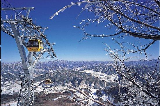 Navette de ski du parc Phoenix (ligne...