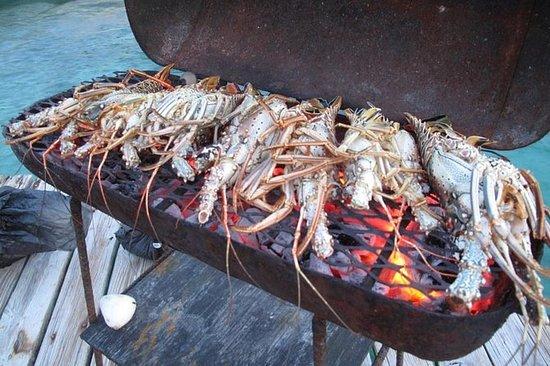 Cocine su picnic privado en la isla
