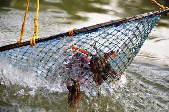 Pesca de caranguejo em Goa - pegar e...