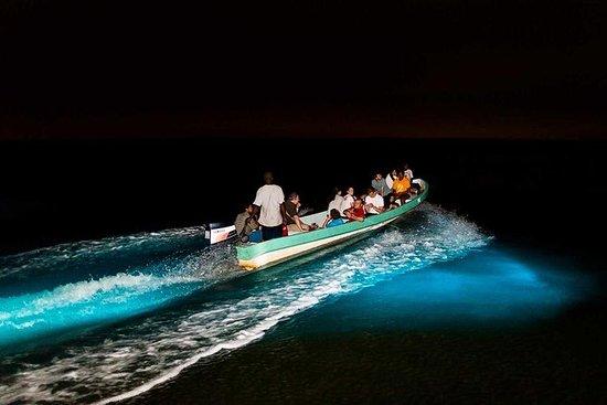 Tour de bioluminiscencia y crucero...