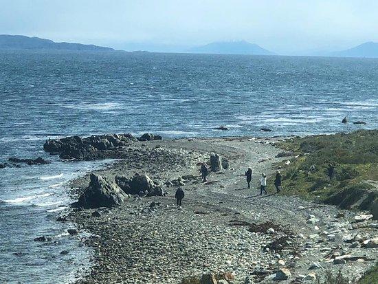 Province of Tierra del Fuego, Argentina: Caminata por la costa del Canal Beagle durante nuestra excursión! Little trekking on the coast of the Beagle Channel during our excursion!